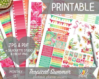 Tropical Summer Printable Planner Stickers, Erin Condren Planner Stickers, Monthly Planner Stickers, Monthly EC Size Stickers - Cut Files
