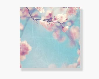 Pink blossom photo canvas, pale blue sky, spring, nature photography, cherry blossoms, flower photography, canvas wall art - Whispers
