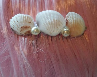 Sea shell hair comb
