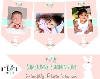 BUNNY First Birthday Bunny Banner Monthly Photo banner Some bunny is turning one Bunny First BIrthday Printable Bunny first birthday banner