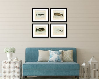 Whale Print Set of 4, Whale Art, Coastal Wall Art, Nautical Wall Art, Beach Home Decor, Whale Posters, Narwhal, Sperm and Bowhead Whales