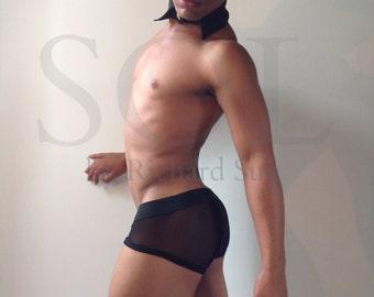 Compleatly Sheer Mesh Trunks