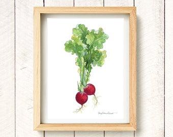 "Radish - watercolor vegetable kitchen art print 8.5x11"""