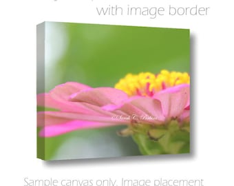 Cottage Chic Art-Pink-Yellow-Green Wall Art-Flower Photo-Fine Art Canvas-Floral Art Canvas Wrap-Bubblegum Pink-Kiwi Green-Nature Wall Art