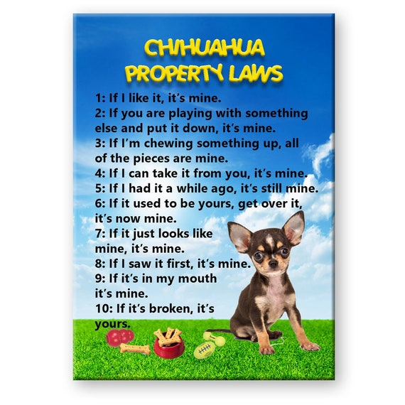 Chihuahua Property Laws Fridge Magnet No 3