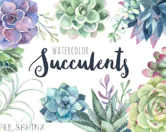 Watercolor Succulents Clipart   Floral Wedding Invitation Clipart - Succulents, Cactus and Air Plants - Instant Download PNGs
