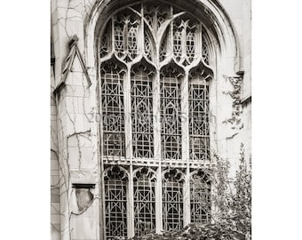 Vintage Window, Vines, Stained Glass, Sepia toned, Black and White, University of Chicago, Gothic  Architecture, Collegiate