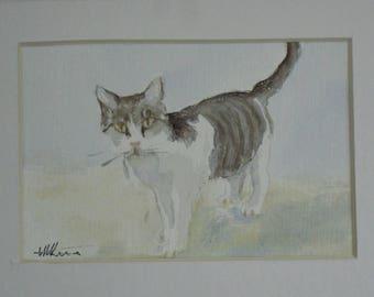 Greek islands cats 1 2 3