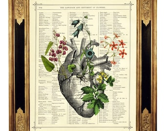 Anatomical Heart Flowers Art Botany II - Vintage Victorian Book Page Art Print Steampunk Valentine's Day Gothic