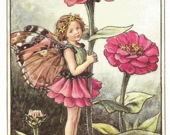 The Zinnia Fairy Cicely Mary Barker Flower Fairies Vintage Print 1995 Wall Art Nursery Decor Fairy Print Home Decor Print Fine Art