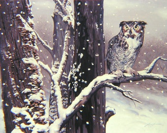 "Horned OWL wildlife bird print by RUSTY RUST 11"" x 17"" heavy paper, 11"" x 14.25"" appx. image  size / O-8-P"
