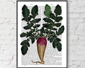 Foodie gift - Turnip Print - Kitchen art ideas Country kitchen decor Vegetable print Gardeners gift Wall art on canvas Poster hanger