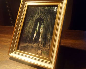 "Unique framed photo print ""The Root Chapel"""