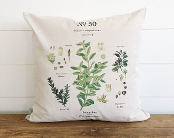 Boxwood Botanical Pillow Cover