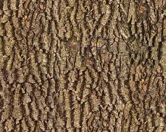 Wood Bark Texture Digital Image for Crafts