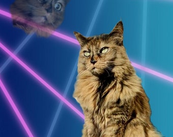 Customized laser photos of you and your animal companion.
