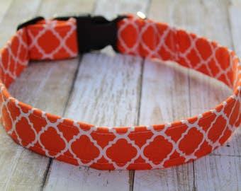 Orange Quatrefoil Dog Collar - Personalized Dog Collar - Quatrefoil Dog Harness - Moroccan Dog Collar - Spring Dog Collar - Quatrefoil Leash