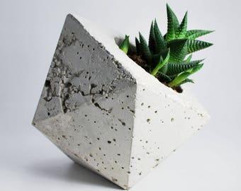 Geocube BIG - geodesic concrete planter - geometric planter - ikosaeder