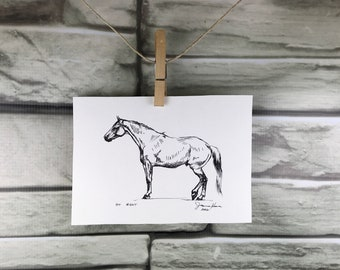 "Horse art original pen & ink horse drawing sketch ""At Rest"""