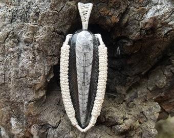 Crinoid Wirewrap pendant!