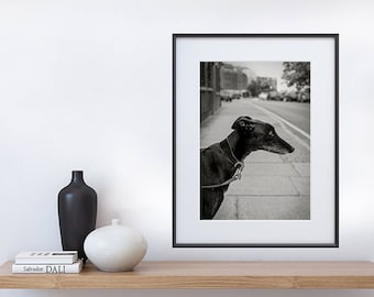 NELSON - Black and White Art Print Photography