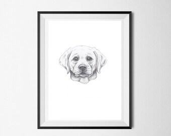 Lab Print Graphite Labrador Puppy Drawing
