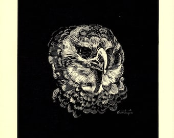 George Kontoupis Scratchboard print 21/500 of a Harpy Eagle