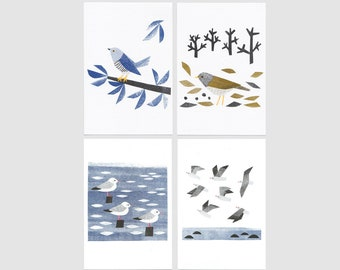 Cuckoo, Pale Thrush and gulls Postcards (from my 2017 calendar) - 4 sheets