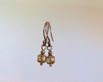 Crystal Drop and Silver Earrings