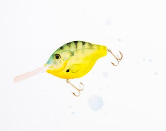 Fishing Lure 5x7