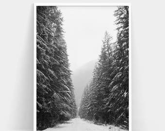 Winter Forest Print, Winter Forest Photography, Nature Prints, Snow Winter Forest Wall Art, Woodland Print, Forest Poster, Minimalist Art
