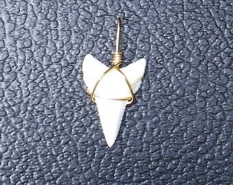 Modern Great White shark tooth pendant GW1