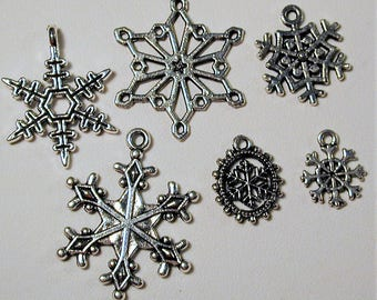 Winter Snowflake Charm Collection  6pc. C152
