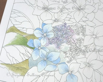 Hydrangea Coloring Page, Flower Coloring Page, Lace Cap Hydrangea, #240, Art Therapy, Adult Coloring Page, Instant Download, Flowers