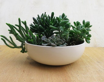 Tabletop Ceramic Pot, Planter 9 inch wide