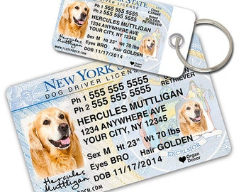 New York Driver License Custom Pet ID Tags and Wallet Card - Dog ID Tag - Personalized Pet ID Tags
