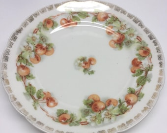 Antique Carl Tielsch 7 inch Plate Cherries and Blossoms