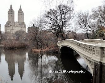 New York Photo Print, Central Park Print, Bow Bridge Print, Brown Cream Photos, Neutral Wall Art NYC Art New York Photography Large Wall Art