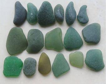 200gms Green Seaglass, Sea Glass Supply, Green Sea Glass, Bulk Sea Glass, Quality Sea Glass, Sea Glass Crafts, Mosaic Supply, Sea Glass