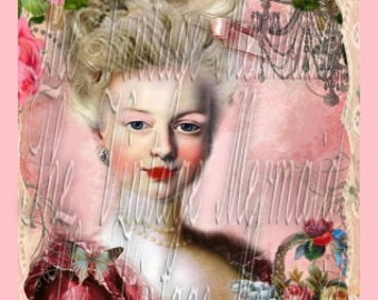 Fabric Block Marie Antoinette in Pink Lace Border Craft Cotton Quilt Panel