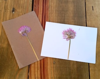 Pressed Flower Cards, Pressed Pink Allium and Yellow Carnation Flower Cards, Blank Note Cards