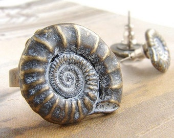 Nautilus Shell Ring, adjustable shell ring, earth tone metal shell ring
