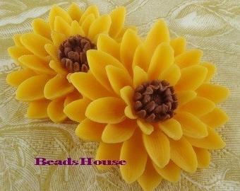 652-00-CA  2pcs Pretty Classic Big Chrysanthemum Cabochons - Yellow w/ Brown.