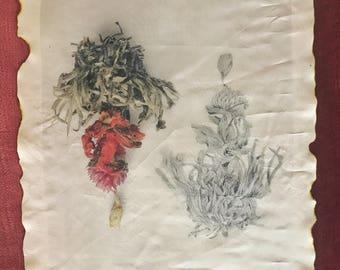 Limited Edition Handmade Silk Print