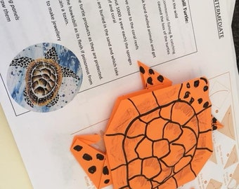 The Hawksbill Turtle, Origami kit of Endangered animals, Learn and Create Series