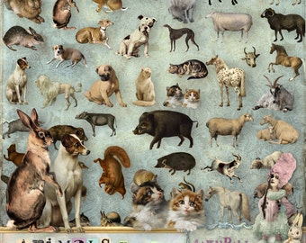 Animals vol.1 - 3 x Digital Collage Sheet ATC, .png - itKuPiLLi - Printable, Instant download