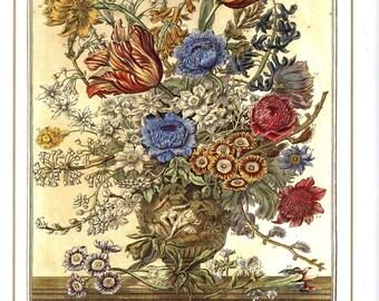 "March Flowers Art Print- 12 Months of Flowers -Botanical Illustration 1700s Winterthur Floral Arrangement- Baby Wedding Gift Idea 7.75 x 10"""
