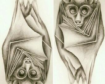 Bat - drawing,  pencil, graphite, bloodsucker, black, nocturnal, dark, gothic, vampyr, vampire