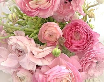 Ranunculus Flowers, Pink Floral Prints, Shabby Chic Decor, Pink Flower Photos, Romantic Spring Ranunculus Prints, Pink Ranunculus Flowers