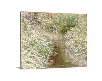 Golden Grass, Wilderness Art, Nature Photography, Water Art, Water Reflections, Muleshoe Ranch, Ready to Hang, Canvas Photo, Fine Art Gift